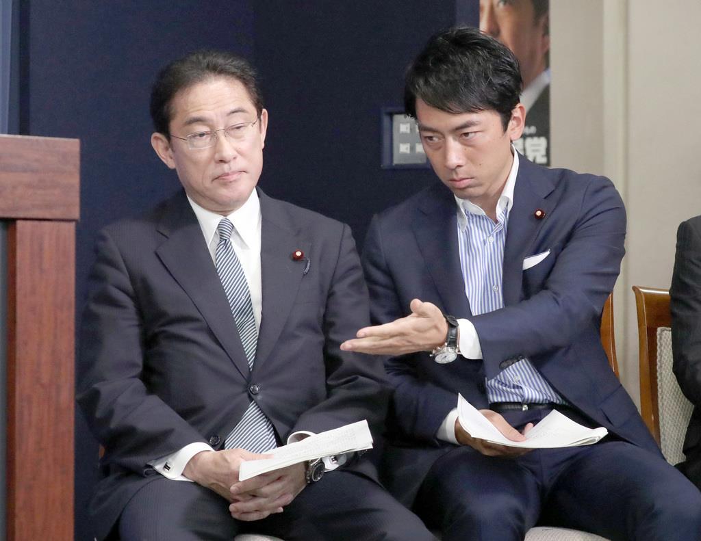 自民党の岸田文雄政調会長(左)と小泉進次郎厚生労働部会長(春名中撮影)