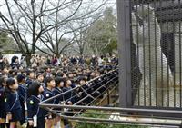 姫路市立動物園のホッキョクグマ「ユキ」、園児らとお別れ 秋田へ来月嫁入り