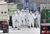 【経済インサイド】豚コレラ 「輸出」でワクチン接種に慎重