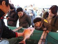 新鮮な魚介類やグルメ 和歌山・加太で「桜鯛祭り」