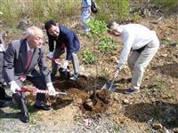 熊谷桜を被災地応援で気仙沼へ 武将・熊谷直実の末裔が結ぶ2つの地