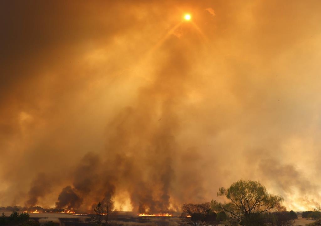 渡良瀬遊水地のヨシ焼き。黒い煙に覆われた太陽はオレンジ色に=16日朝、栃木県栃木市