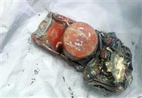 仏当局が音声記録回収成功 エチオピア航空機事故