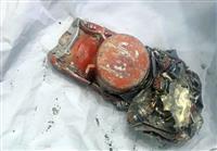 仏当局がフライトレコーダーのデータ回収成功 エチオピア航空機事故
