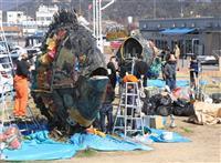 宇野港でチヌの親子、お色直し 来月開幕の瀬戸芸で展示 今回は「イノシシ」も登場 岡山