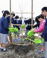 復興願い「宇宙桜」植樹 山梨から寄贈 宮城・名取