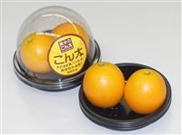 【おらがぐるめ】極上スイーツのような甘み 静岡・清水の特産キンカン「こん太」