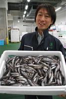 【魚の国 宝の国】栄養満点とろけるメヒカリ 丸ごと味わって