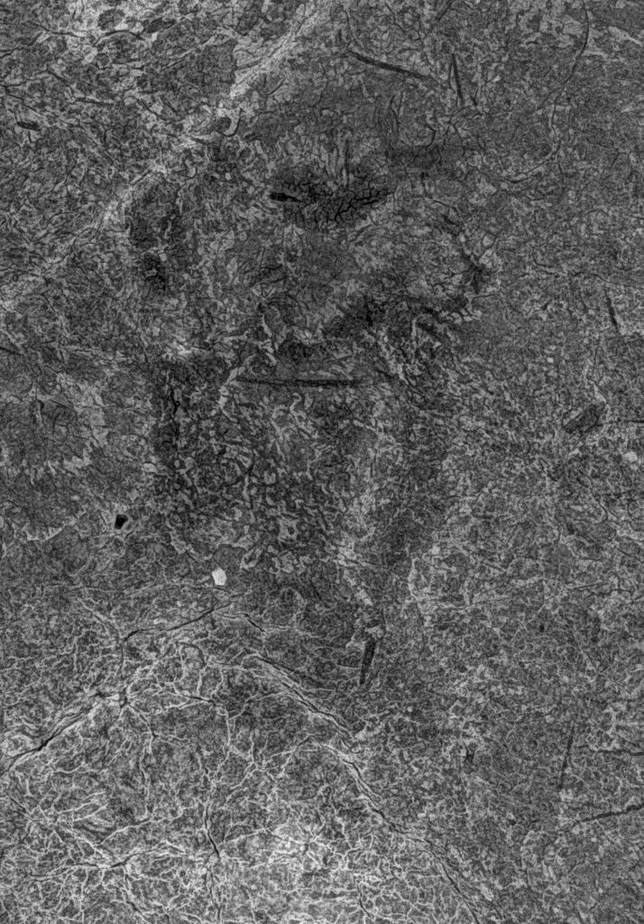 文化庁がX線撮影した壁画画像。「辰」の可能性があるという(文化庁提供)