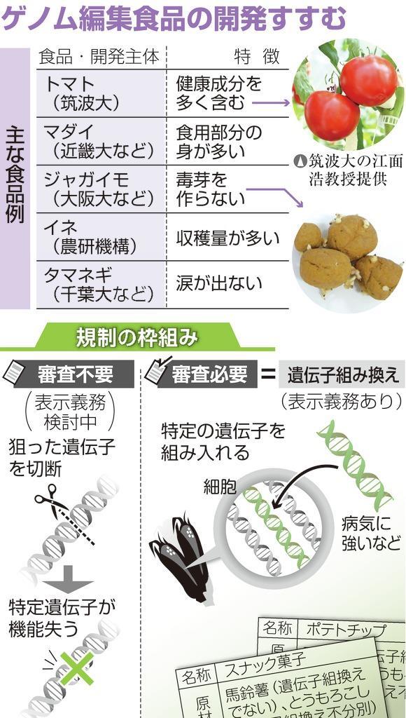 「ゲノム編集」食品、表示義務化へ 政府が検討