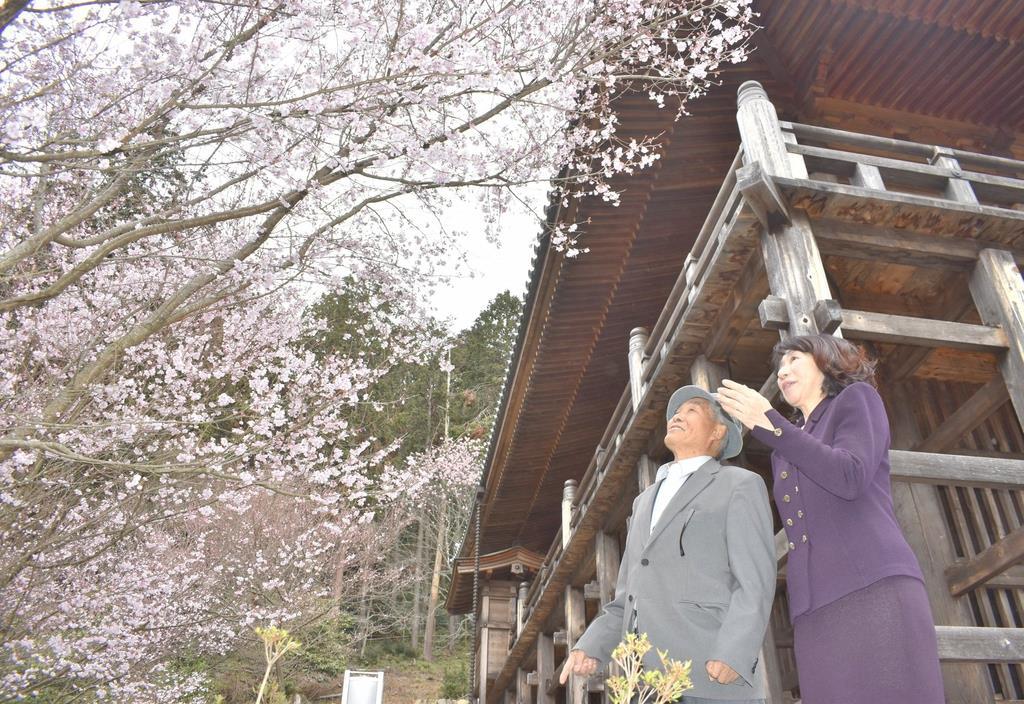 日航事故追悼の桜と初対面 御巣鷹管理人、遺族と交流