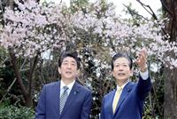 首相「夢や希望が咲き誇る時代に」 公明・山口代表と官邸で花見
