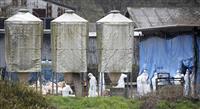 岐阜で新たに豚コレラ 美濃加茂市の養豚場