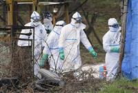豚コレラ発生の2養豚場の殺処分完了 愛知と岐阜
