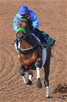 ブラストワンピースが人気 競馬の大阪杯前日オッズ