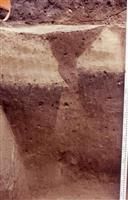【かながわ美の手帖】鎌倉歴史文化交流館春季企画展「鎌倉Disaster 災害と復興」