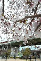 7日に投開票 大阪の未来は 大阪ダブル選と府議・市議選