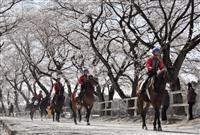 騎手の卵、桜並木が祝福 栃木、候補生へ恒例授業