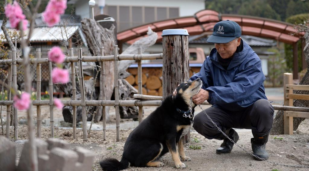 避難指示が解除された福島県大熊町大川原地区の自宅で愛犬を愛でる佐藤右吉さん=10日午前(鴨川一也撮影)