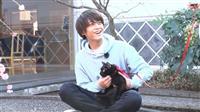 """キンプリ高橋""""噂の黒猫""""追跡 「坂上どうぶつ王国3時間SP」"""