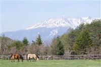【甲信越ある記】木曽馬乗馬センター(長野・木曽) 心地よい揺れを感じ景色満喫