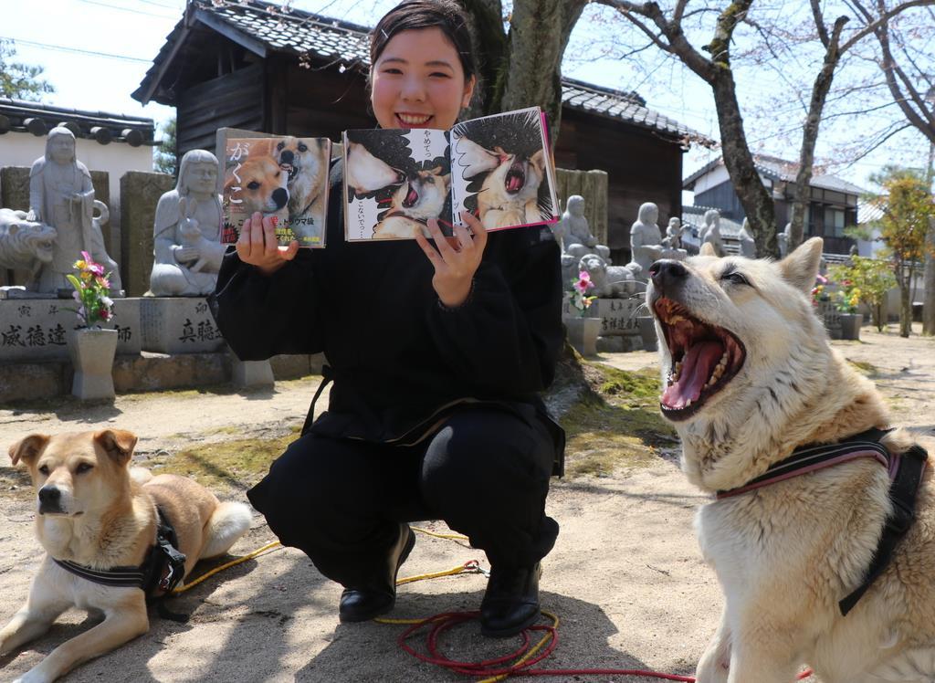 こてつ(右)となむに囲まれて写真集を手にする豊岳由華さん=岡山県玉野市