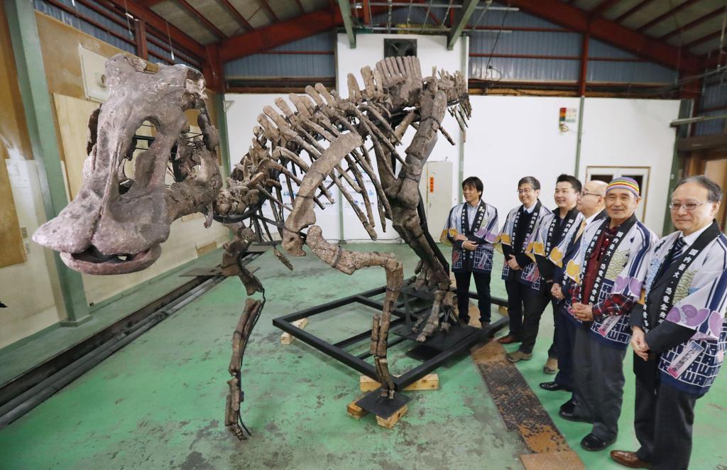 報道陣に公開された「むかわ竜」の全身復元骨格=11日、北海道むかわ町