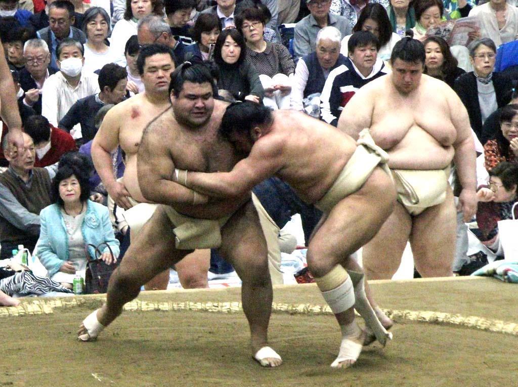 腰痛で出遅れの高安が本格稽古 大相撲春巡業