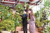 神戸・北野に18日オープン 植物の魅力や神戸の街並み満載の施設
