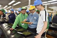 手もみ茶最高値139万円 静岡で初取引始まる