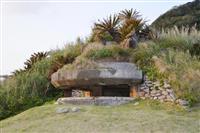 奄美島内に戦跡ひっそり200カ所 砲台跡など「調査し平和訴えを」