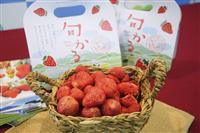軽井沢の乾燥イチゴ発売