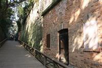 【大人の遠足】神奈川・横須賀「猿島」 自然豊かな人気観光地、かつては軍事要塞