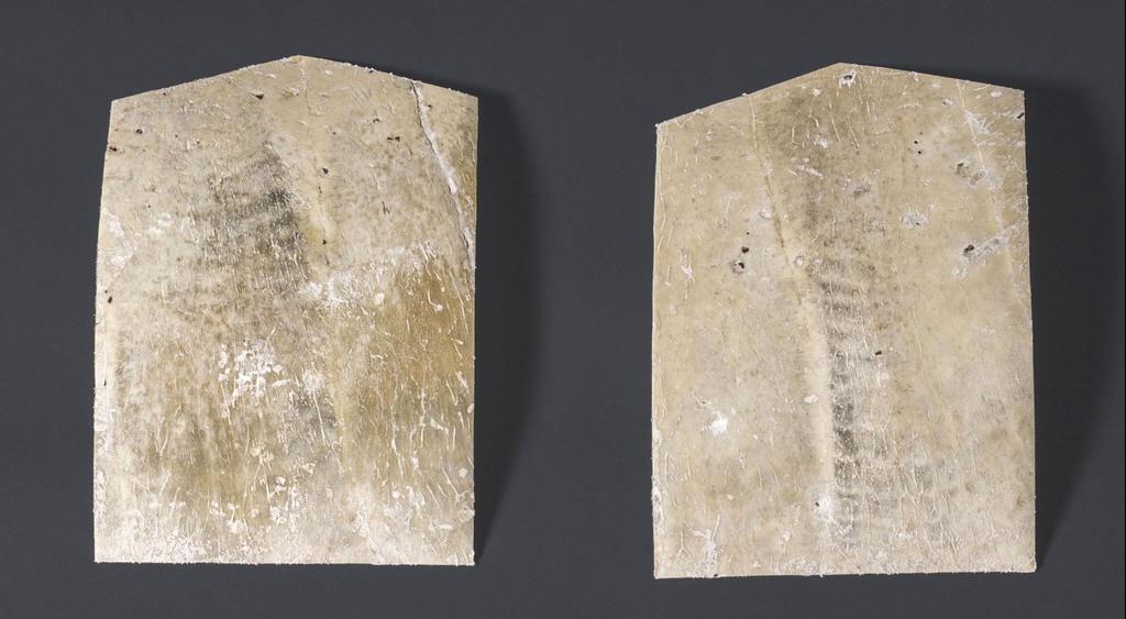「斎田点定の儀」で使用される将棋の駒形に加工されたアオウミガメの甲羅(宮内庁提供)