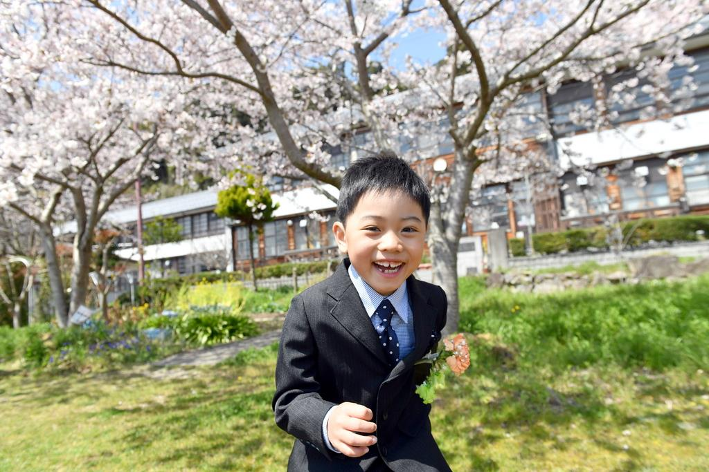 満開の桜に迎えられ、沖島小学校に入学したたっぺい君=4月8日、滋賀県近江八幡市(沢野貴信撮影)