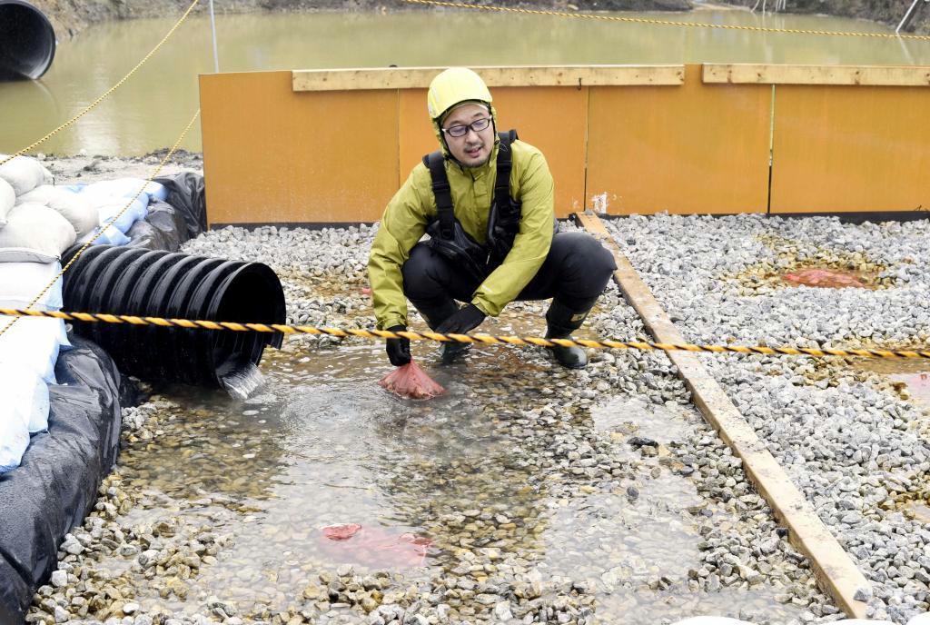 石灰石を敷き詰めた仮設水路の様子を調べる宮崎大国際連携センターの伊藤健一准教授