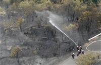 愛媛の山林で大規模火災 半日以上、約30ヘクタール焼ける