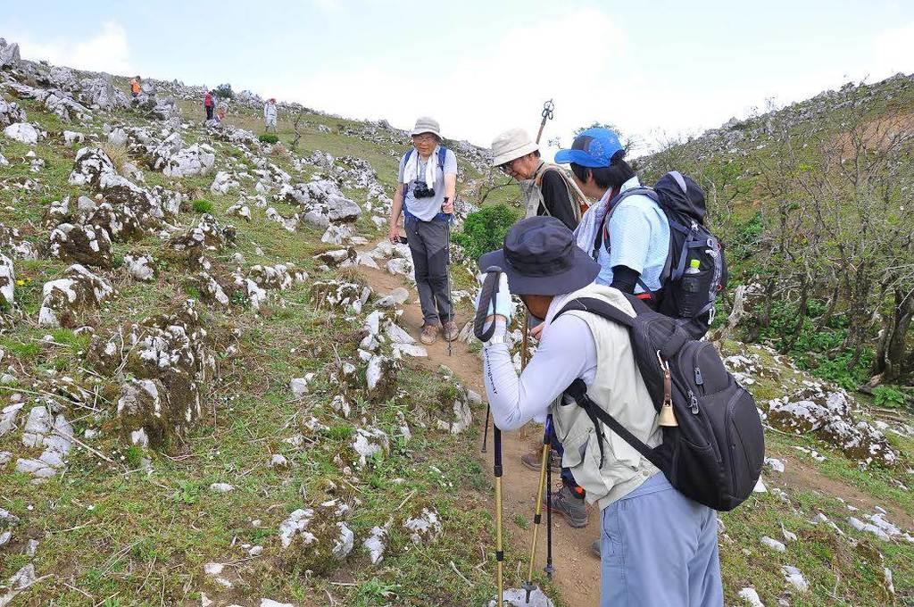 ニホンジカの食害で石灰岩がむき出しになった霊仙山の山肌