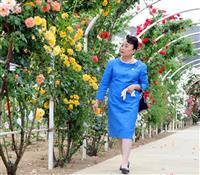 信子さま、茨城でバラのトンネルご覧