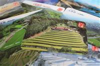 「棚田カード」で保全に一役 島根県が作成し田植え、稲刈り手伝いで無料配布
