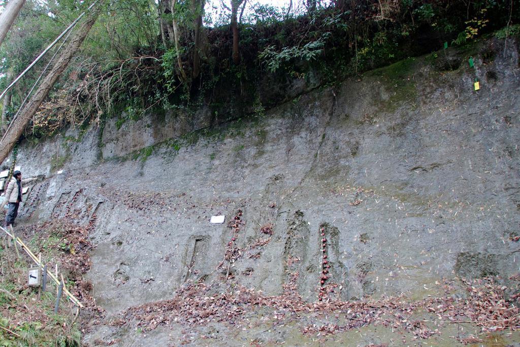 地質年代の基準地として審査中の場所。左の人物が指す位置より上が「チバニアン」の命名が提唱されている年代の地層=平成28年、千葉県市原市