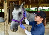 元競走馬ウサギノカケアシ 成田ゆめ牧場で第2の馬生