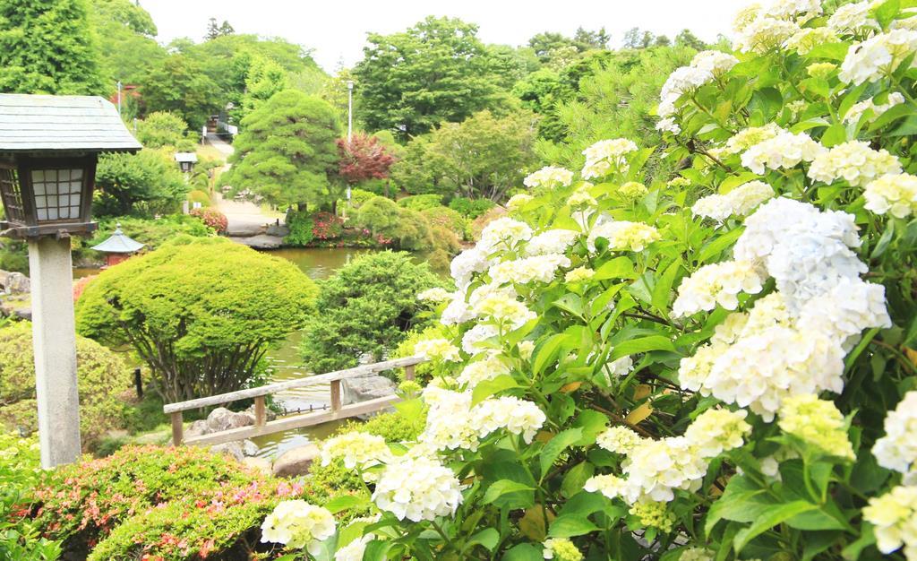 日本庭園とアジサイの競演も趣深い=11日午前、水戸市の保和苑(永井大輔撮影)