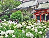 都会のオアシス、華やか「ダンス」 大阪の坐摩神社