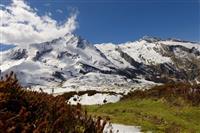 マイクロプラスティックは風に乗り、雪深い山脈まで覆い尽くしている:調査結果