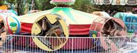 回転遊具で男児2人軽傷 北海道「ルスツリゾート」