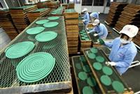 【動画あり】夏の到来を前に和歌山で蚊取り線香の生産ピーク