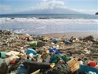 【葛城奈海の直球&曲球】プラスチックごみ問題に日本の英知