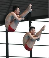 【プールサイド】汗がかけない 病抱える飛び込みの坂井 五輪内定1号目指す