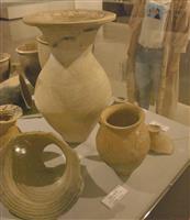 「えひめ発掘平成史」 石器や動物の骨展示